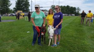 Volunteers with miniature donkeys on the grass at EFFORT Day, held at the Christiansburg High School track.